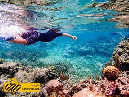 عکس زیباترین سواحل با آبهای فیروزهای,سواحل زیبا,امبرگریس کی Tarikhema.org