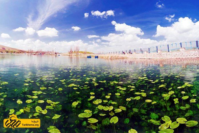 عکس سرآب نیلوفر (معمولا به غلط سراب نیلوفر نوشته میشود) دریاچهٔ کوچکی است که در حدود ۲۰ کیلومتری شمال غرب شهر کرمانشاه قرار گرفتهاست. Tarikhema.org