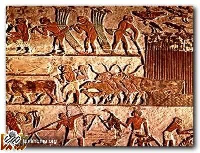 https://tarikhema.org/images/2011/04/Ancient_Egypt-1.jpg