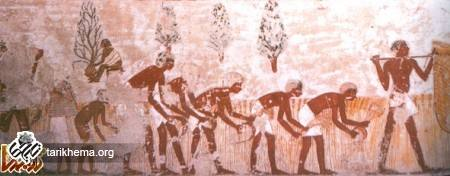 http://tarikhema.org/images/2011/04/imenena-1.jpg