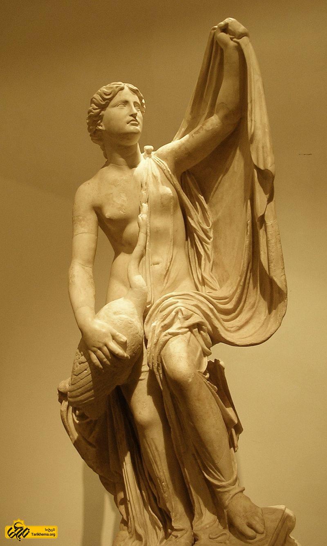عکس دختر تستیوس، پادشاه آیتولیایی بود. با توندارئوس پادشاه اسپارت ازدواج کرد و هلن، کلوتایمنسترا، کاستور و فویبه را به دنیا آورد. در افسانهها آمده است زئوس به شکل قویی در آمد و لدا را فریفت و با او آمیزش نمود، و او پدر حقیقی هلن، کاستور و پولوکس بوده است. about-zeus Tarikhema.org