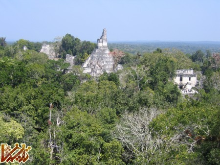 http://tarikhema.org/images/2012/04/Tikal12.jpg