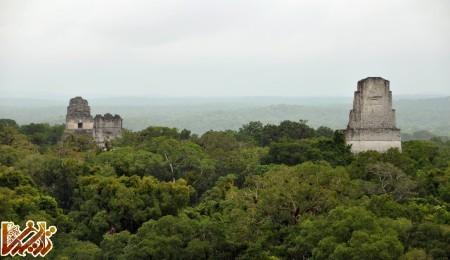 http://tarikhema.org/images/2012/04/Tikal_temples_1_2_3_5_2009.jpg