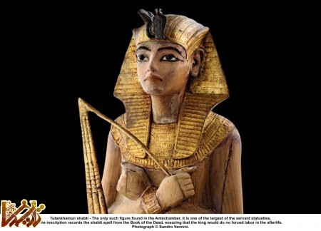 http://tarikhema.org/images/2012/06/Tutankhamun_Shabti.jpg