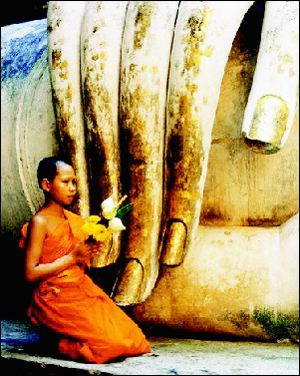 تعلیم بودا