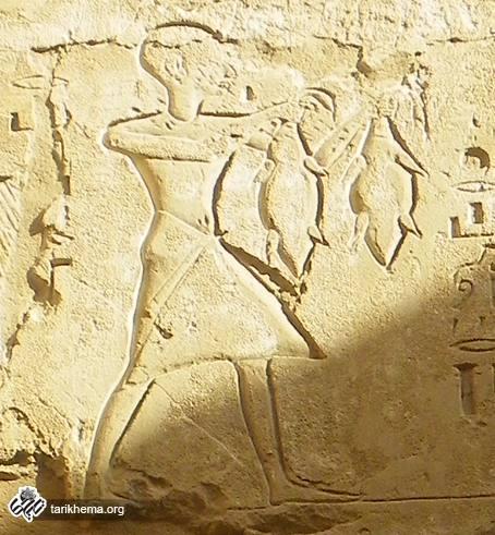 آداب و رسوم و مراسم قربانی مصریان از نظر هرودت