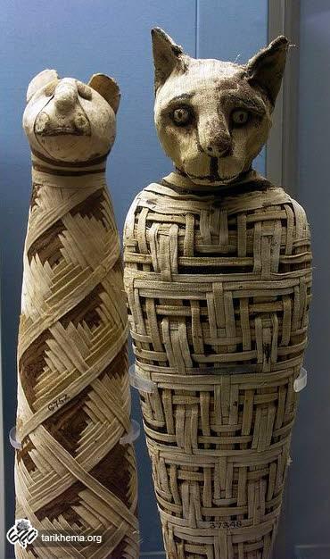 این مومیایی در موزه ملی بریتانیا نگهداری می شود