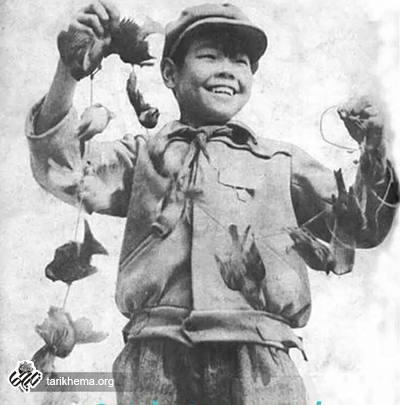 نفرین گنجشک ها؛ بزرگ ترین قحطی تاریخ چین