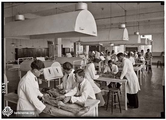 تصاویری جالب از دانشجویان پزشکی در قدیم
