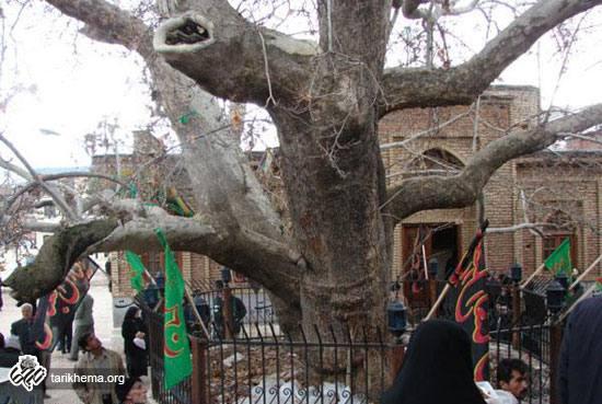 نذر و وقف در تاریخ ایران