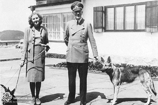 همه چیز درباره هیتلر