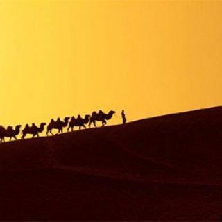 تسخیر جاده ابریشم توسط مغول ها