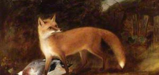 روباه حیلهگر