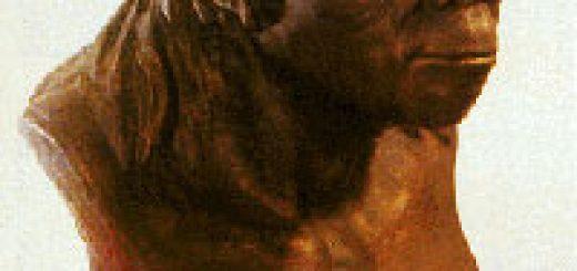 فسیلهای استخوان انسان بیجینگ چگونه ناپدید شدند؟