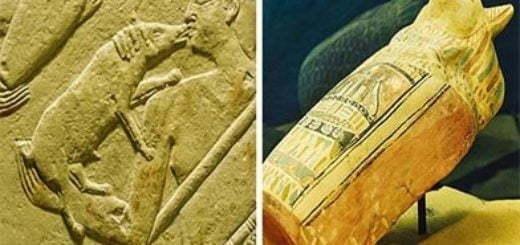 در مصر باستان علاقه ی زیادی به حیوانات خانگی داشتند