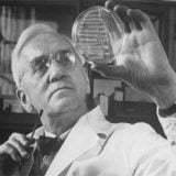 اختراع پنی سیلین