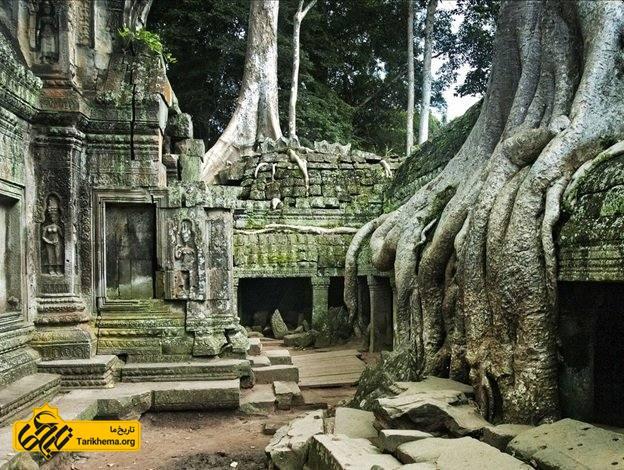 معبدی که در آنجا آنگکور و جنگل به هم می رسند