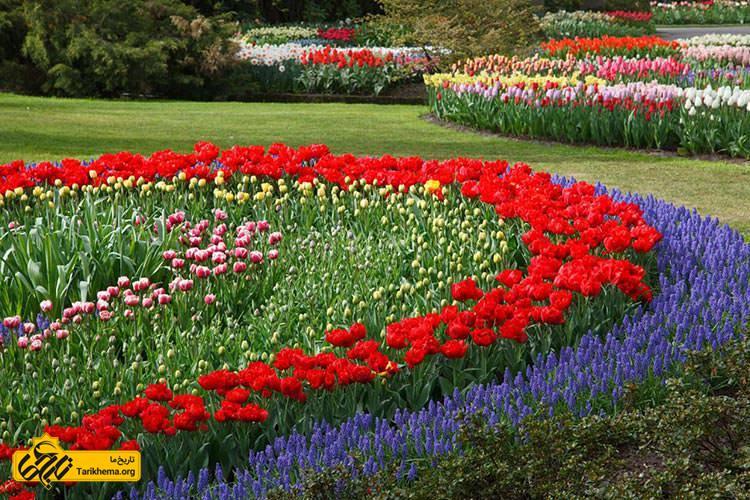 عکس تنوع گلها در باغ گلهای اصفهان %d8%a8%d9%87-%d8%a8%d8%a7%d8%ba-%da%af%d9%84%d9%87%d8%a7%db%8c-%d8%a7%d8%b5%d9%81%d9%87%d8%a7%d9%86-%d8%ae%d9%88%d8%b4-%d8%a2%d9%85%d8%af%db%8c%d8%af Tarikhema.org