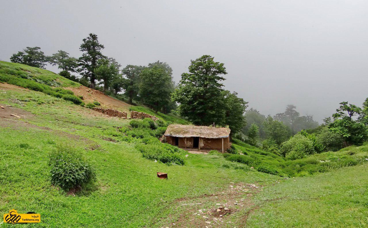 عکس طبیعت بی نظیر جنگل ابر %d8%ac%d9%86%da%af%d9%84-%d8%a7%d8%a8%d8%b1-%d8%b4%d8%a7%d9%87%d8%b1%d9%88%d8%af Tarikhema.org