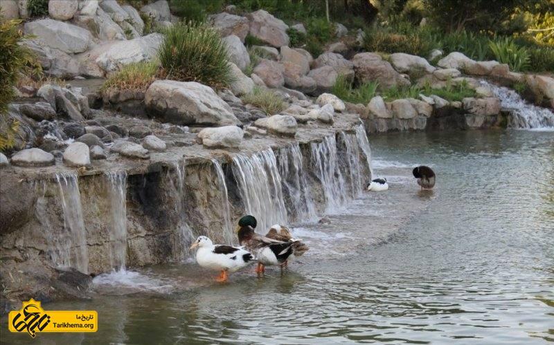 برکه ها و آبشار باغ