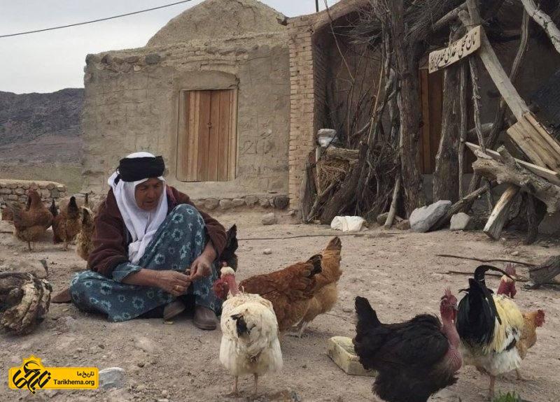 پیرزن در لباس زیبای روستایی در حال غذا دادن به پرندگان