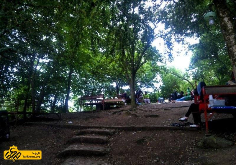 پیمایش طبیعت و لذت از جنگل