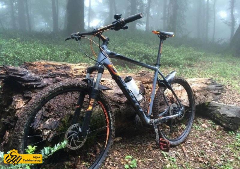 دوچرخه سواری در جنگل الیمستان