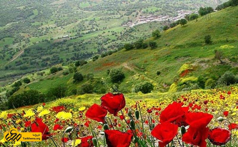 راهنمای سفر به کردستان