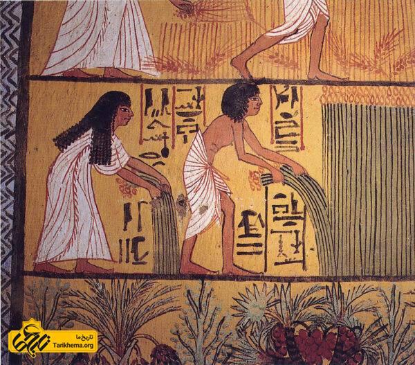 نگاره ای از زوج مصری در حال برداشت محصول