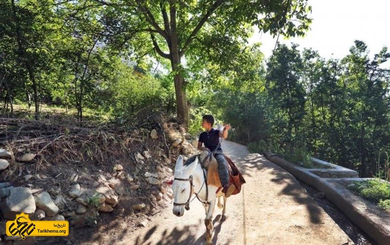 آهار از روستاهای دهستان رودبار قصران بخش رودبار قصران شهرستان شمیران استان تهران میباشد که در ۲۳ کیلومتری شمال غرب گلندوک واقع است.