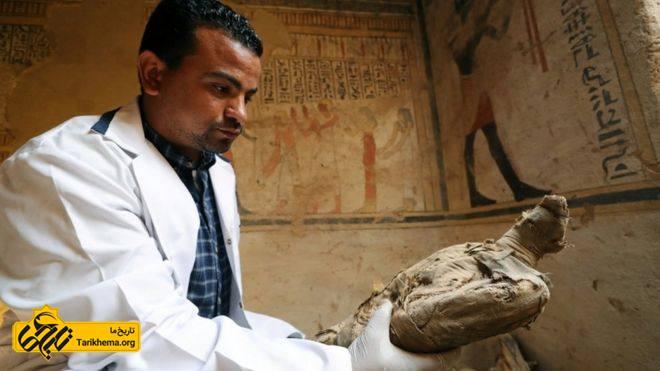عکس کشف موشهای مومیایی شده در یک مقبره مصر %da%a9%d8%b4%d9%81-%d9%85%d9%88%d8%b4%e2%80%8c%d9%87%d8%a7%db%8c-%d9%85%d9%88%d9%85%db%8c%d8%a7%db%8c%db%8c-%d8%b4%d8%af%d9%87-%d8%af%d8%b1-%d9%85%d9%82%d8%a8%d8%b1%d9%87-%d9%85%d8%b5%d8%b1 Tarikhema.org