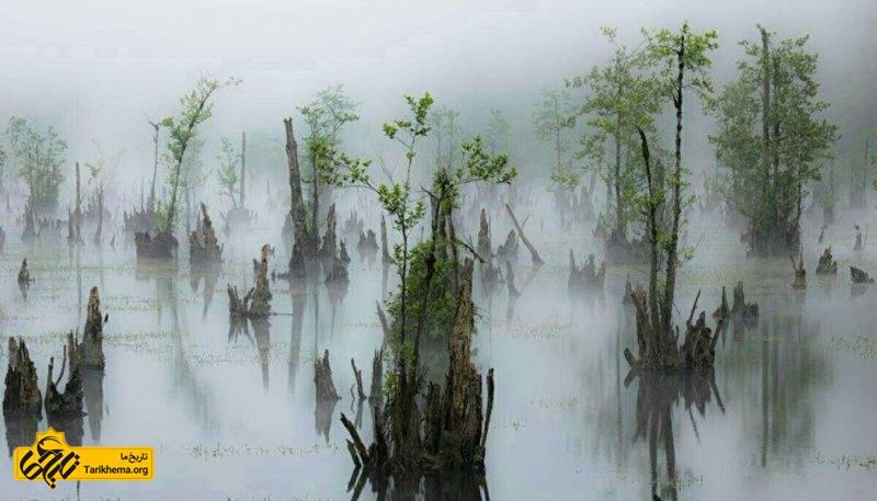 نام محلی آن دریاچه ممرز است اما به دلیل باتلاقی بودن دریاچه و همچنین وجود درختان کمر شکسته که در اغلب اوقات نیز پوشیده از مه است به دریاچه ارواح بیشتر شناخته میشود.