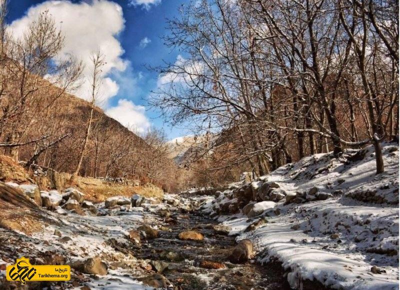 بوژان در زمستان