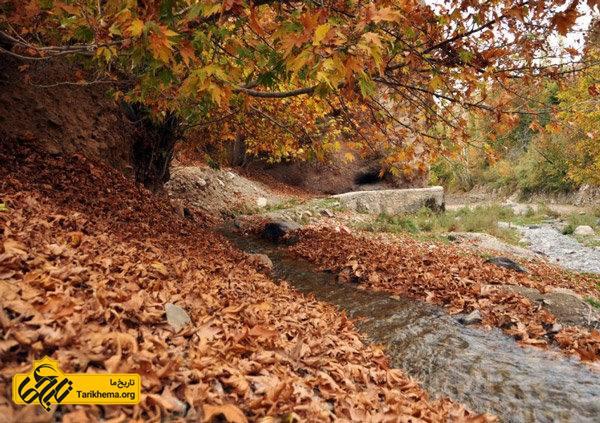 عکسی از طبیعت بوژان
