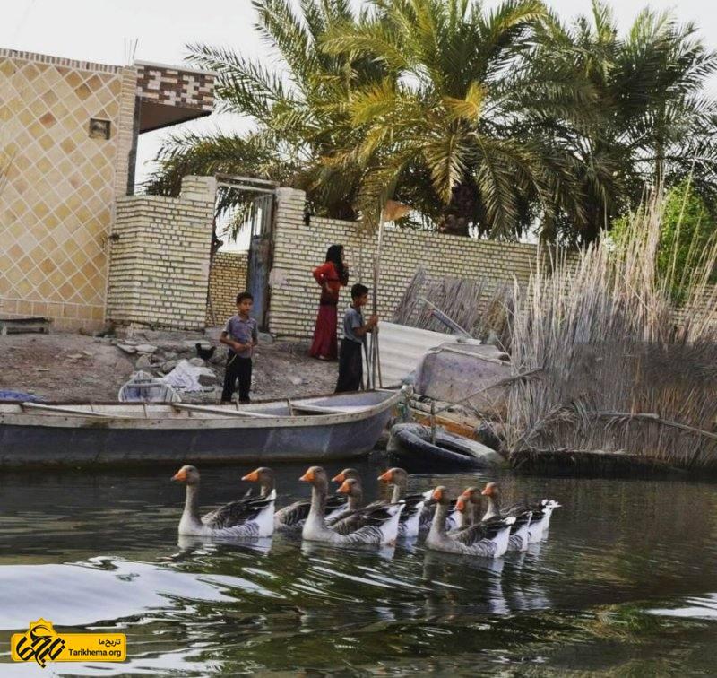 ساکنان روستا با استفاده از مصالحی همچون خشت و گل و نی که تالاب در اختیارشان قرار میدهد خانههای خود را میسازند