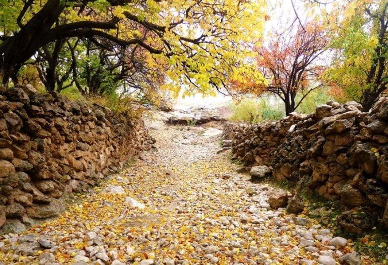 روستای زنوزق در پاییز