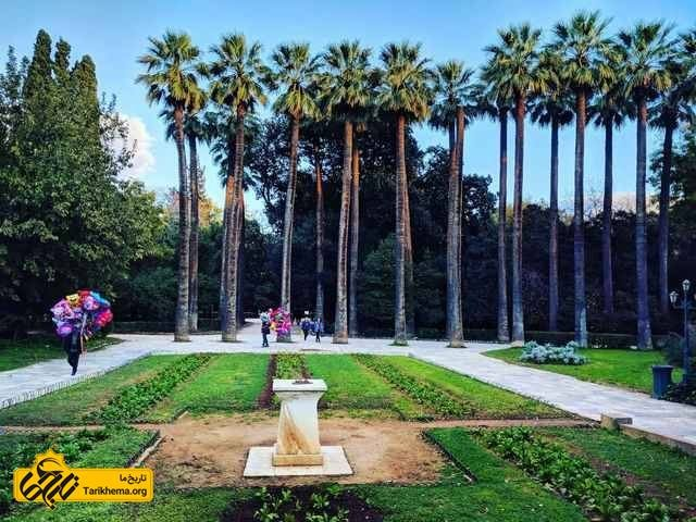 درختان نخل باغ ملی آتن