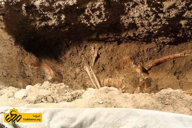 بقایای مونالیزا در فلورانس