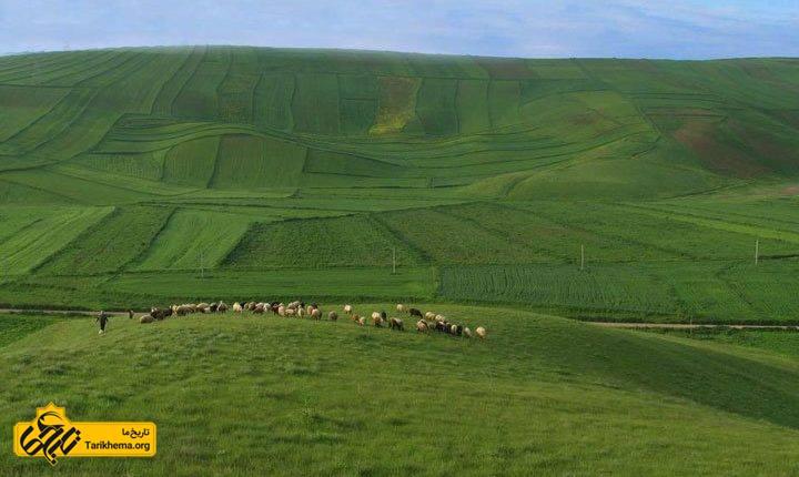 مکان های دیدنی اردبیل در تابستان