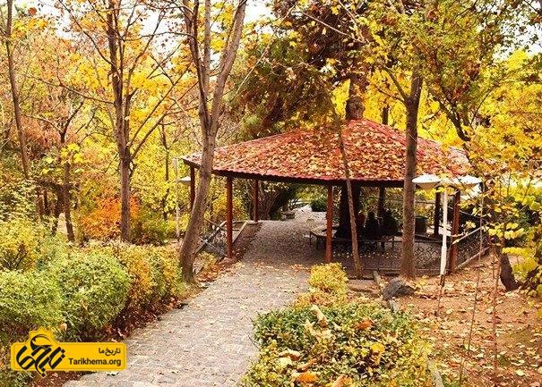 معرفی جنگل های اطراف تهران