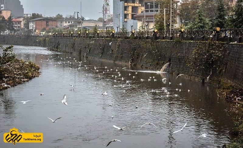 رودخانه های استان گیلان