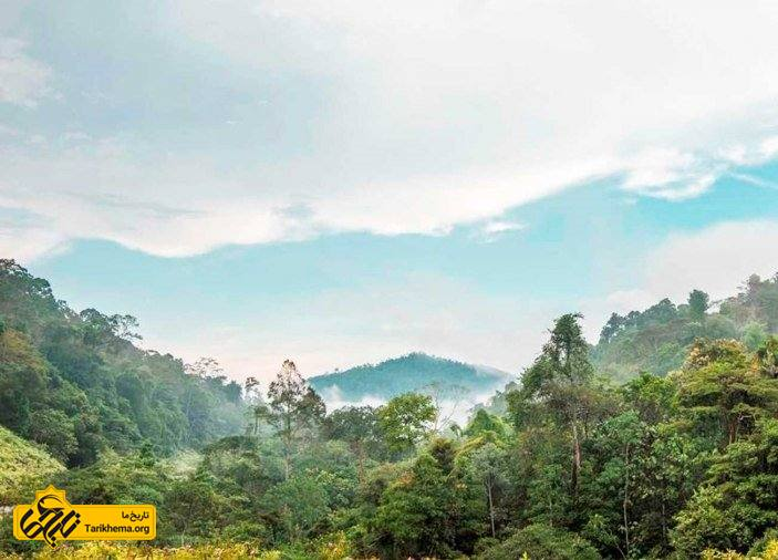 پاهانگ مالزی