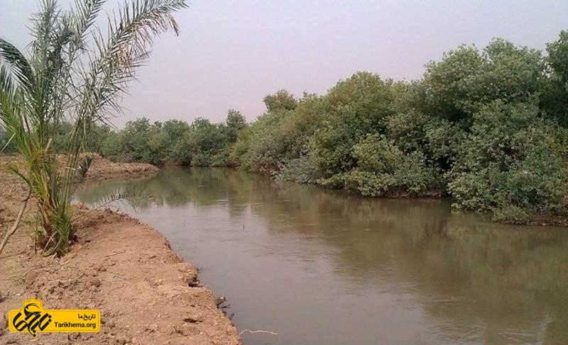 رودخانه شاووردر حال ذر از میان نیزارهای خوزستان