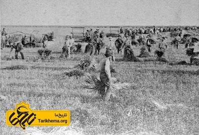 عکس کشاورزی در دوره قاجار