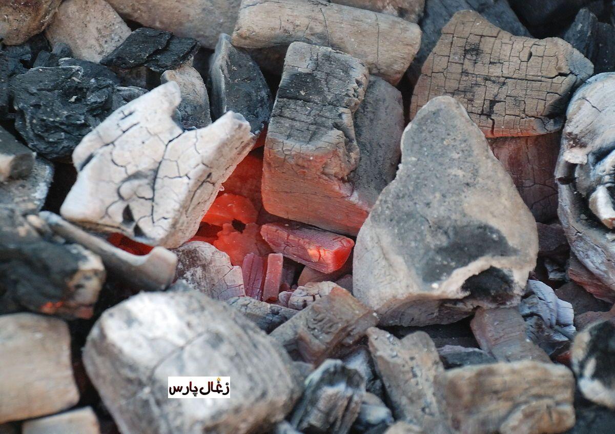 خرید زغال فشرده