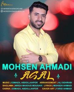 محسن احمدی عسل