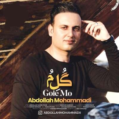 عبدالله محمدی گل مو