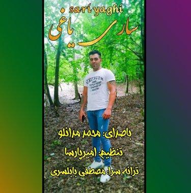 محمد مدانلو ساری یاغی