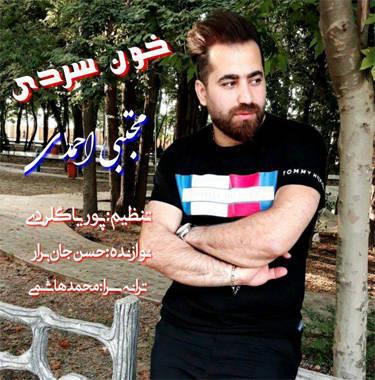 مجتبی احمدی خون سردی