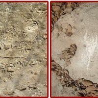 تائید یا رد قدیمیترین سند خلیجفارس در بررسی کتیبه خارک